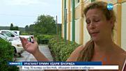 Ураганът Ермин удари Флорида