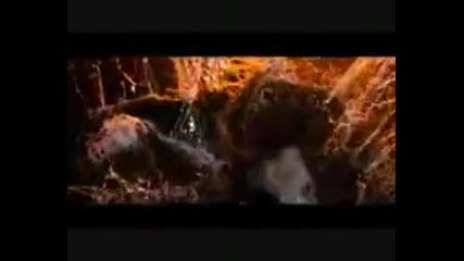 Култовите хорър филми Фреди срещу Джейсън (2003) и Тексаско Клане (2003) / Бг Субс