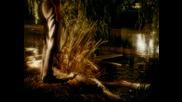 (hd) Ник Кейв и Кайли Миноуг Къде растат дивите рози (видео) гледай свали