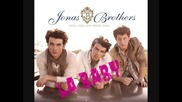 Jonas Brothers - L.a. Baby New Song 2010 Jonas Season 2 Hq