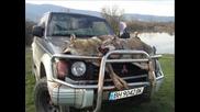Лов на вълци в с.медовница
