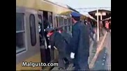 Барзо вав Влака