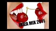 Ibiza Mix 2011 - Megamix
