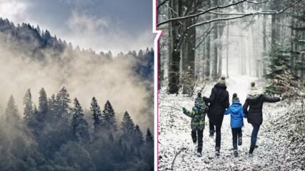 Декември идва с истинска зима: Сняг и минусови температури през новата седмица!