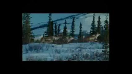 Eddie Vedder-No Ceiling
