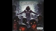 Disturbed - A Welcome Burden