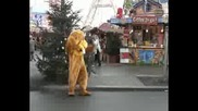 Голям, Жълтокафяв Заек Съзиран В Берлин