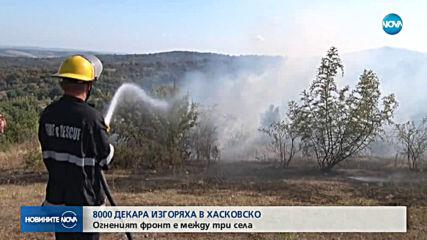 Пожари бушуват на няколко места у нас, затвориха участък от АМ