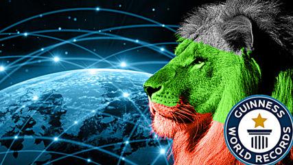 25 години интернет и българин в рекордите на Гинес