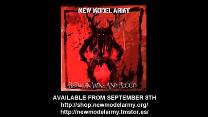 New Model Army - Guessing