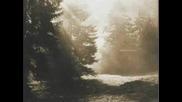 Nebelung - Ausklang