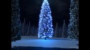 Коледа | Paula Seling - Colo-n sus
