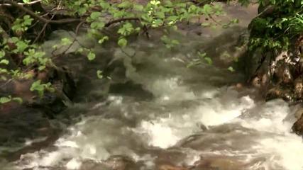 Вършец - местността Водопада