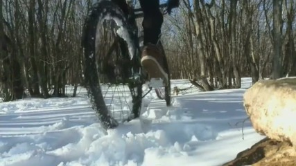 Зимни приключения през годините