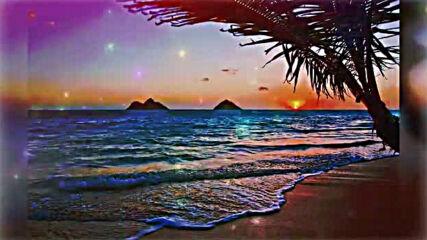 _ Ziggy Marley - Beach in Hawaii _
