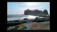 Twilight Tour of Forks and La Push in Wa