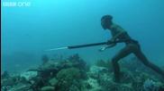 Лов на един дъх в морето