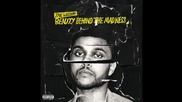 The Weeknd - In The Night ( A U D I O )
