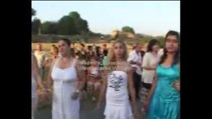 djamaikata 2010