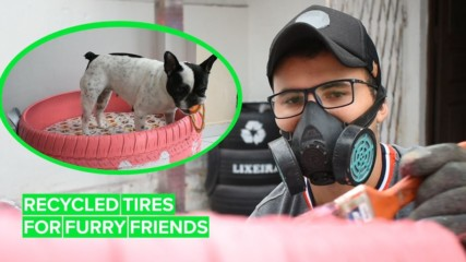The 23-year-old turning old tires into pup-tastic pet beds