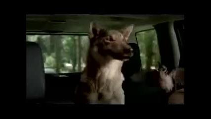 Пеещи Животни - Супер Реклама