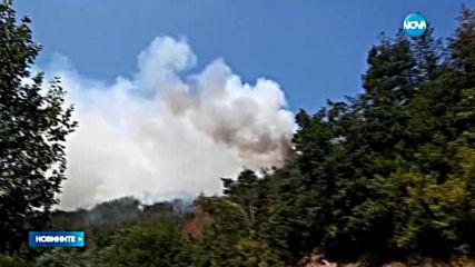 Огнена стихия вилнее в Родопите