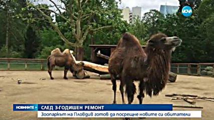 Пловдив ще има нова зоологическа градина