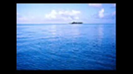 Снимки На Острови 1