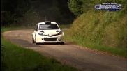 Toyota Yaris Wrc 2015-2016