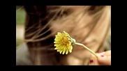 4mplify - Sunshine Disco (original)