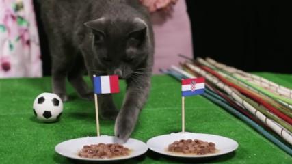 Кой ще грабне купата на грандиозния финал на Световното в Русия