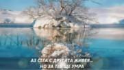 Srecko Savovic - Ne placi srno moja - Превод