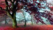 Nightwish - The Wayfarer // lyrics
