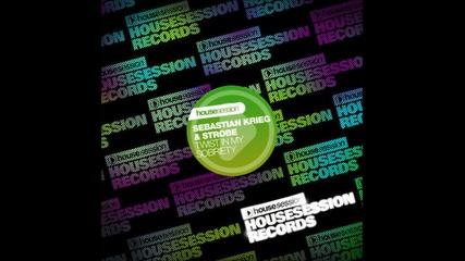 Sebastian Krieg & Strobe - Twist In My Sobriety ( Tune Brothers Remix )