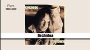 06. Biagio Antonacci- Orchidea/албум Adagio Biagio/1991