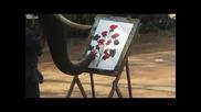 Слон рисува картина с хобот