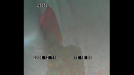 Скок 11 Декември 2008