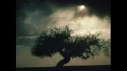 Sonata Arctica - Draw Me
