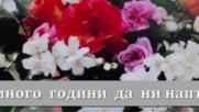 Поздрав за Димитър Василев