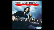 The Waterboys-because The Night ( cover )