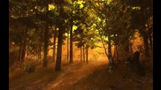 Чудна есенна гора