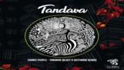 Shanti People - Tandava ( Blazy Gottinari Remix )
