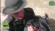 Спасяване на куче от кален поток в Колумбия