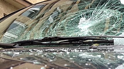 Germany: AfD politicians' cars attacked in Stuttgart