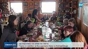 Търсят готвач за българската база на Антарктида