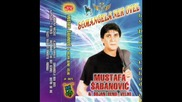 Mustafa Sabanovic - Rovena mecave