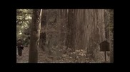[бг субс] Shinobido ( Way Of А Ninja) / Пътят на шиноби - 3/4