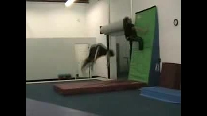 Double Wallflip 2