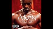 Akon - Get Bucked in Here (dj Felli Fell Villians Electro Remix)