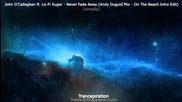 John Ocallaghan ft. Lo - Fi Sugar - Never Fade Away [ Andy Duguid On The Beach Intro Edit ]